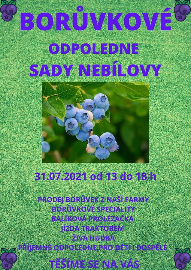 Borůvkové odpoledne v Sadech Nebílovy 31.7.2021