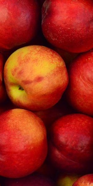 apples-1867043_640